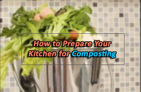 How to Prepare Your Kitchen for Composting