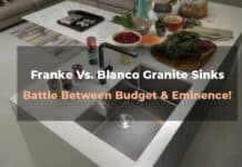 Franke Vs. Blanco Granite Sinks